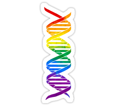 Rainbow Double Helix Sticker By Moietymouse Sticker Design Biology Gift Double Helix