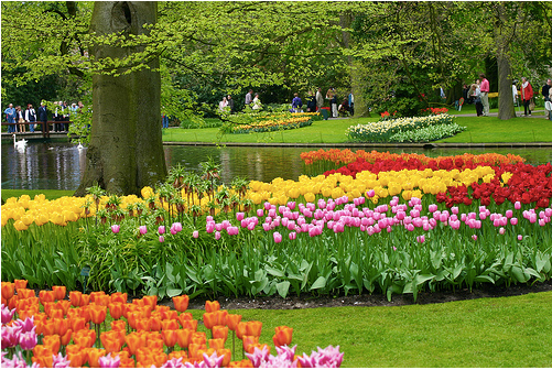 13d928a805991847c64e66d4867d724b - Names Of Gardens In The World