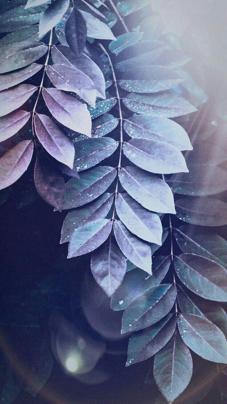Ambesonne Mandala Gym Bag Large Weekender Carry-on Leaf Forms Nature Zen