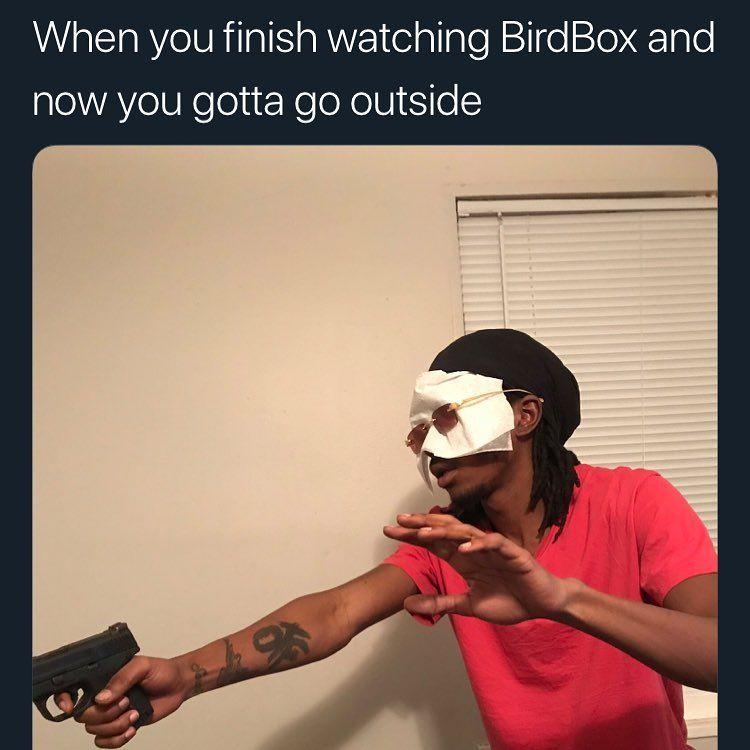 Pin On Birdbox