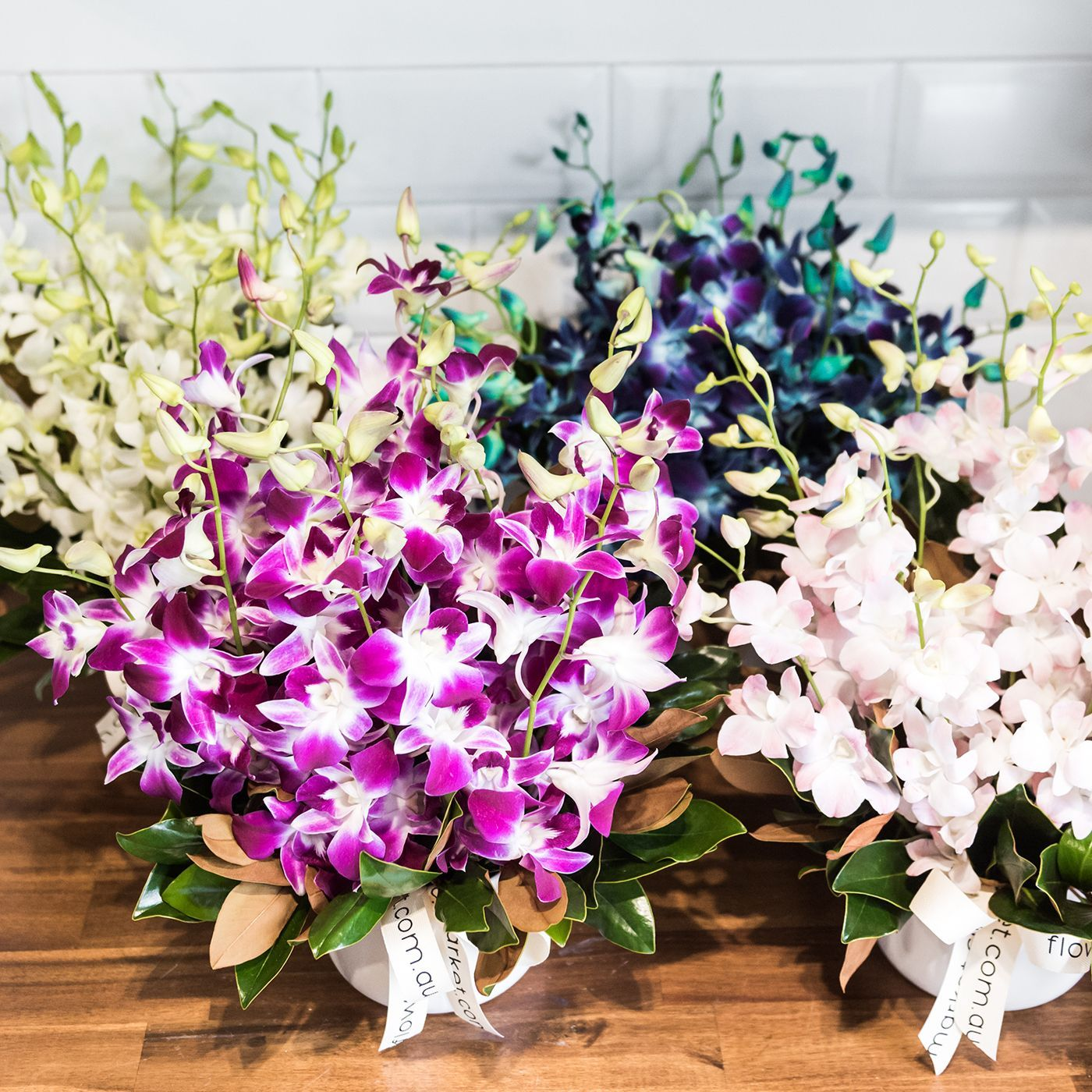 Our popular Singapore orchid arrangements are on sale on