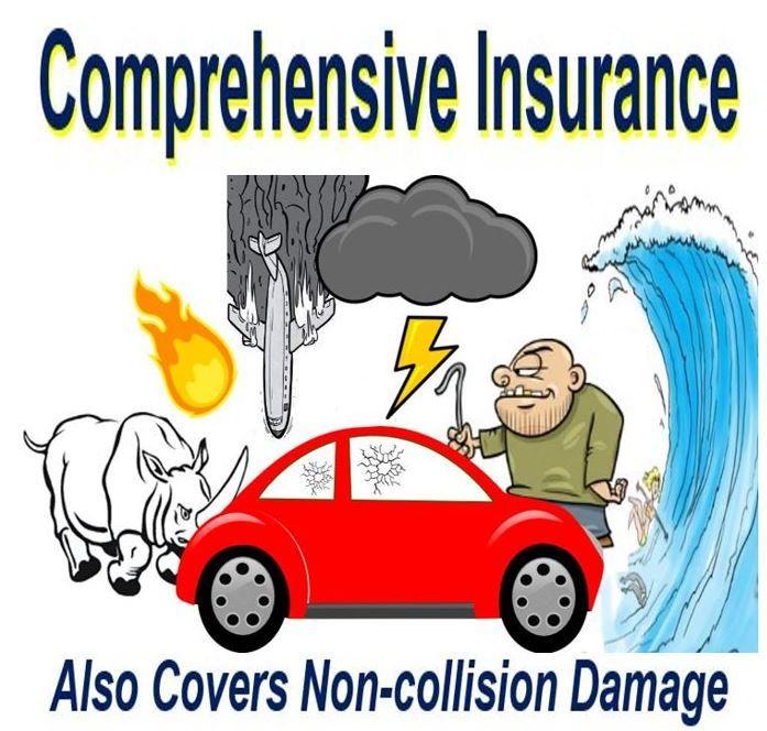 Epingle Par Lapetitewebagency Sur Assurance Auto Jeune Conducteur Assurance Auto Auto Assurance