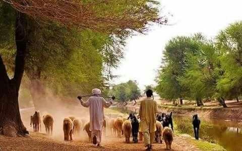 Punjab Pakistan | Village photos, Village photography
