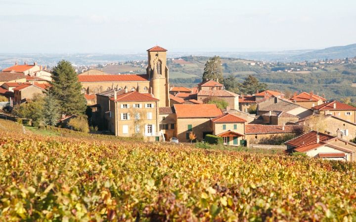 Beaujolais Wine Region - France
