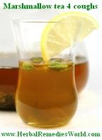 Top herbal cough remedies