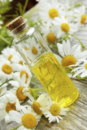 Photo of How to make a make-up remover at home with chamomile – Non Spre …