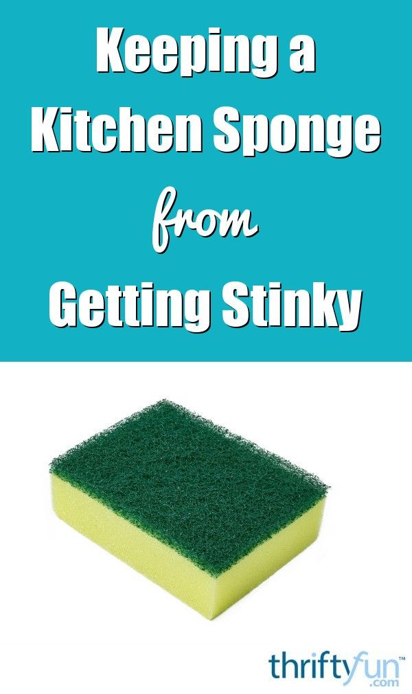 How to Keep a Kitchen Sponge from Getting Stinky   Kitchen ...