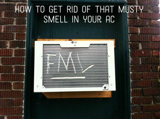 How To Get Rid Of Mold In A Ac Car