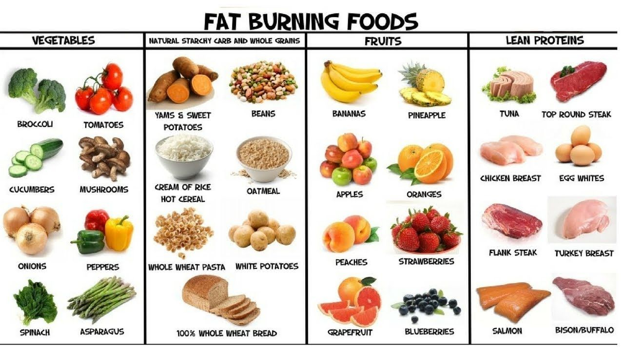 best diet to burn belly fat