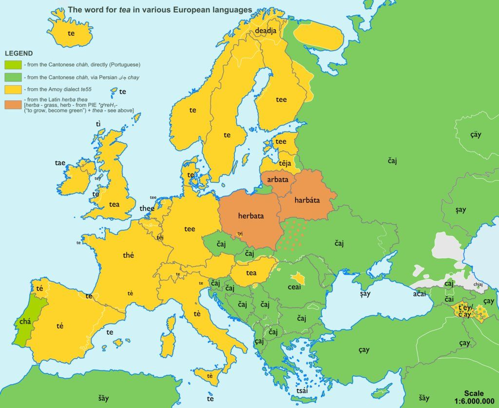 Etymology Map For Tea In Various European Languages Spanish - Map of teas