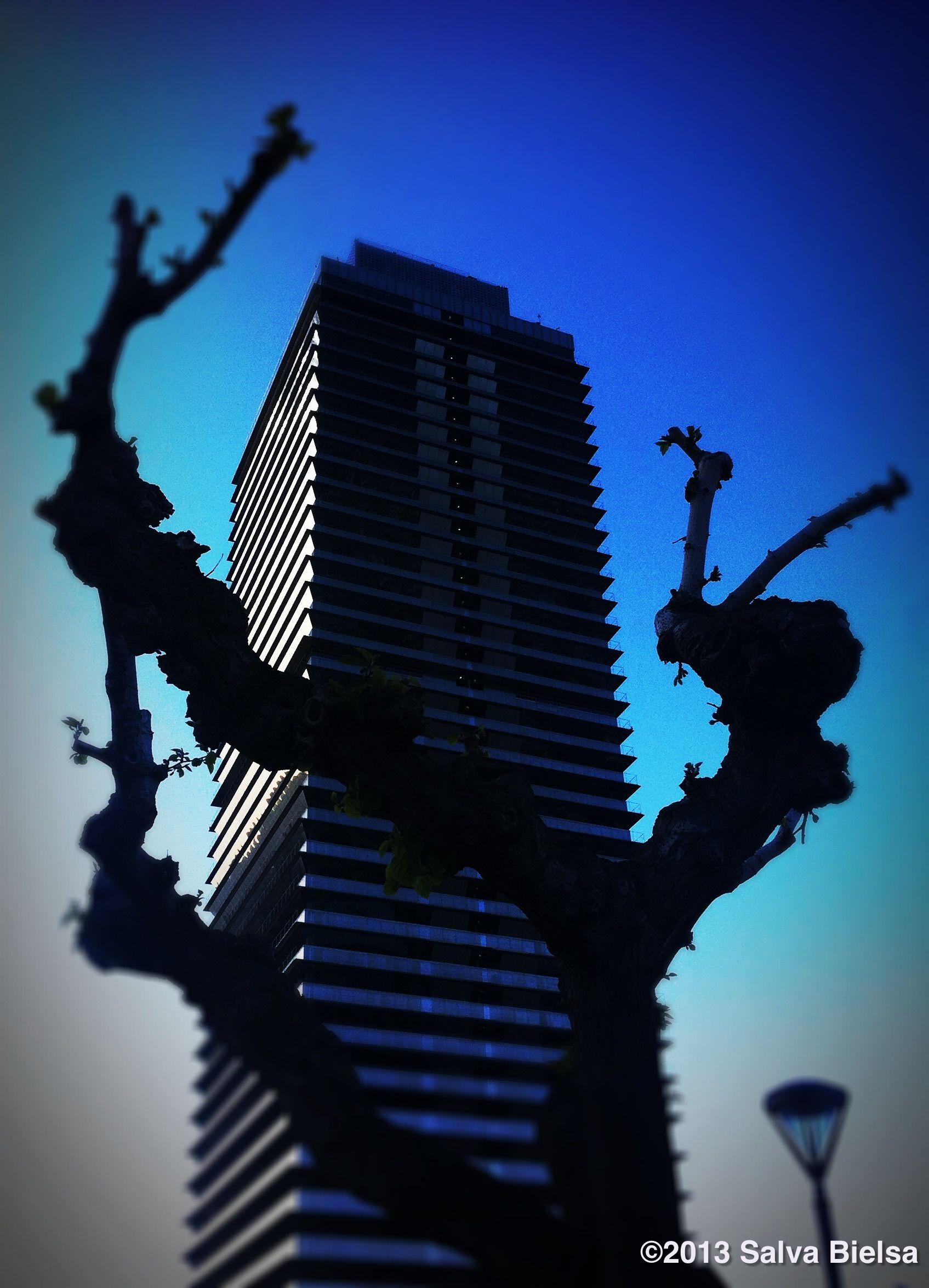 Torre Mapfre ( Barcelona )