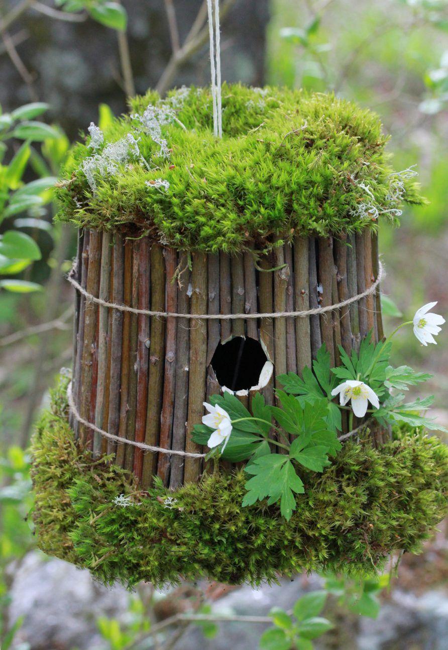 Pin von ~ Danielle D ~ auf My Garden | Pinterest