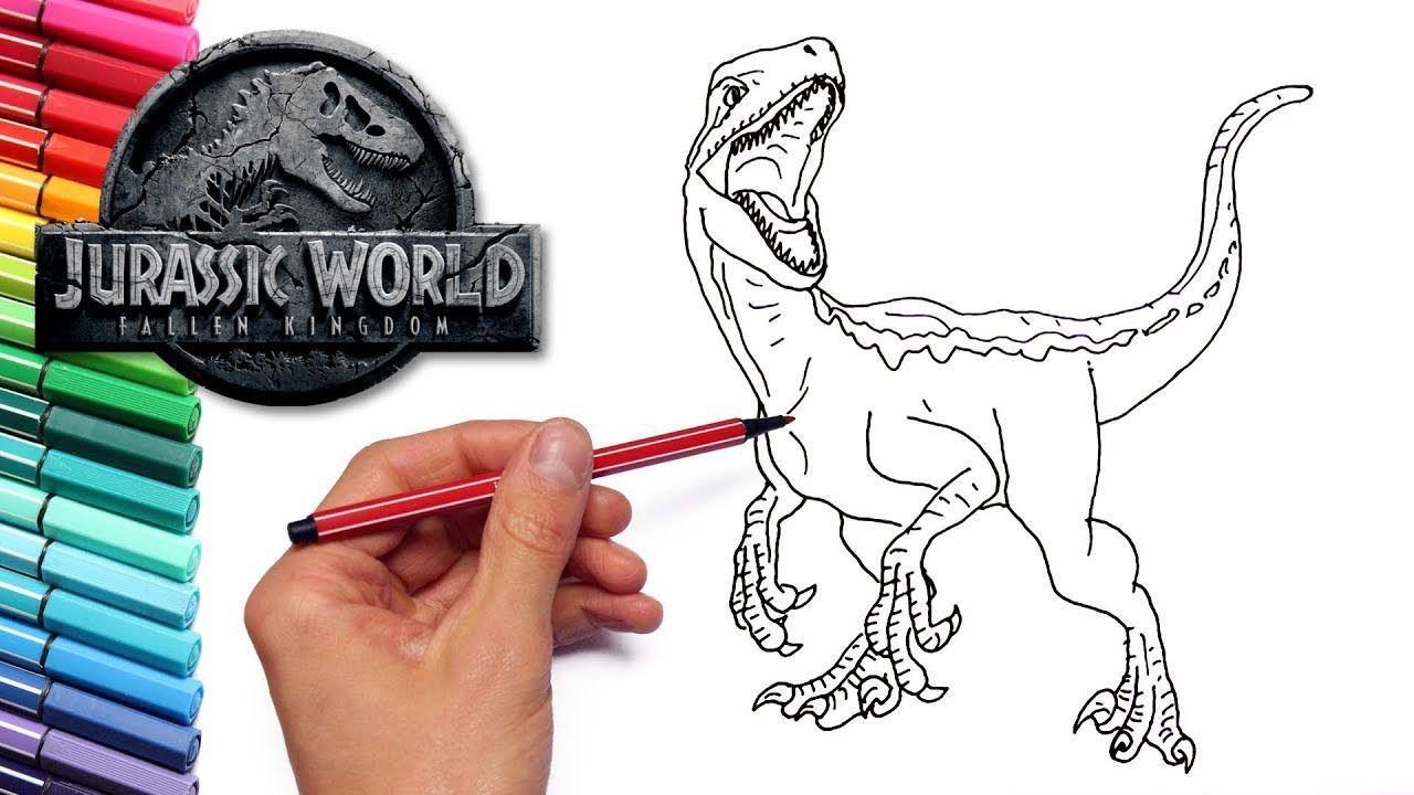Raptor Blue Dinosaur Coloring Pages Libro De Dinosaurios Para Colorear Dinosaurios Colores