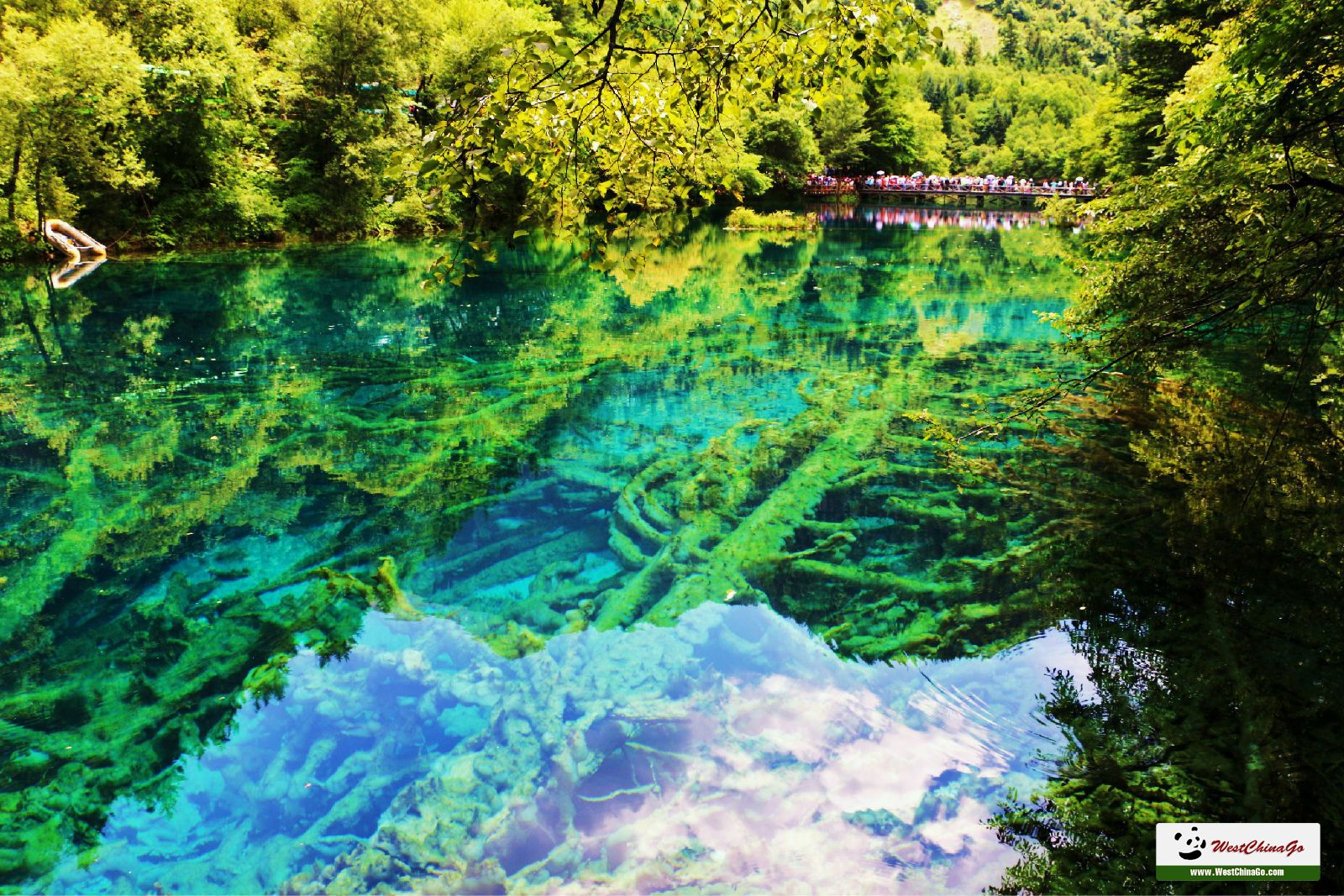 3Days Jiuzhaigou&Huanglong Classic Private Tour package