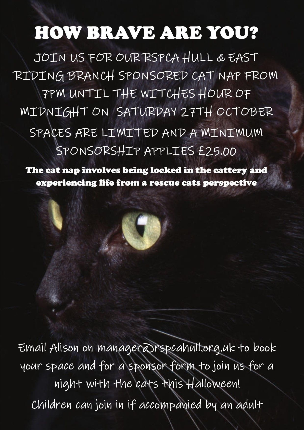 Hull East Riding Branch Events Rspca Org Uk Rspca Event Halloween Event Cat Info
