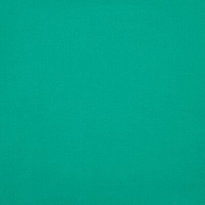 American Silk Sensuede Fabric Color: Viridian
