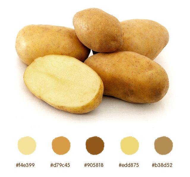 What Is A Color Scheme potato color palette | color palettes | pinterest