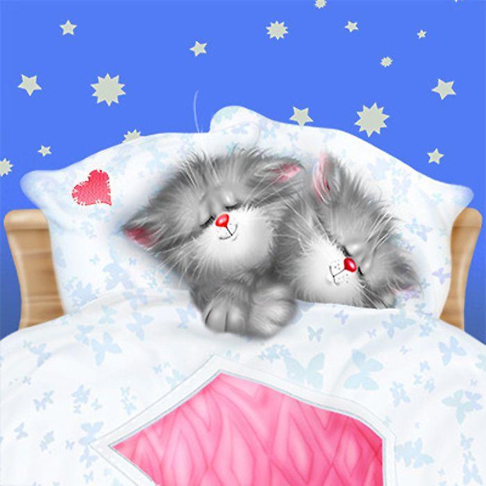 Спокойной ночи кошечка прикольные картинки