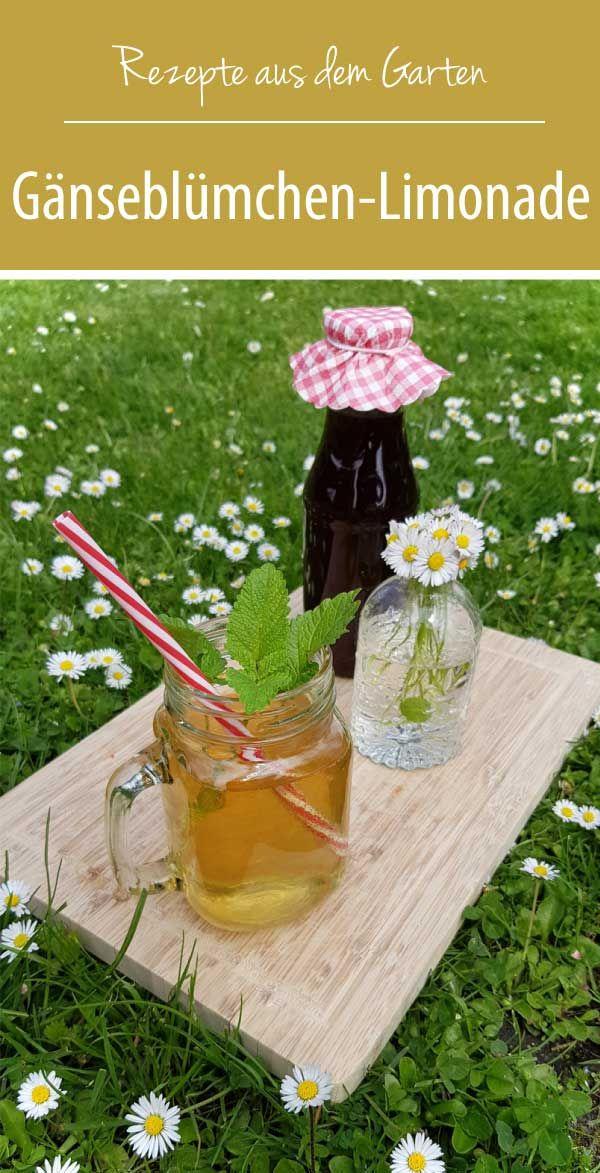 Photo of Gänseblümchen-Limonade | Rezepte aus dem Garten – grüneliebe