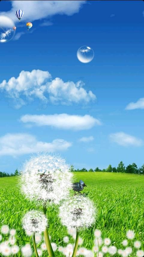 Galaxy S3 Dandelion Download - Galaxy S3 Dandelion 1.0 (Android | Best Games Wallpapers ...