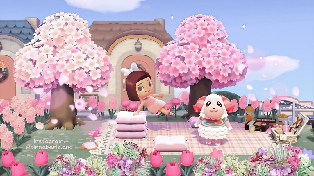 In Japanese Culture Cherry Blossom Represents The Fragility And The Beauty Of Life P S I Know I M N In 2021 Animal Crossing Qr New Animal Crossing Blossom House
