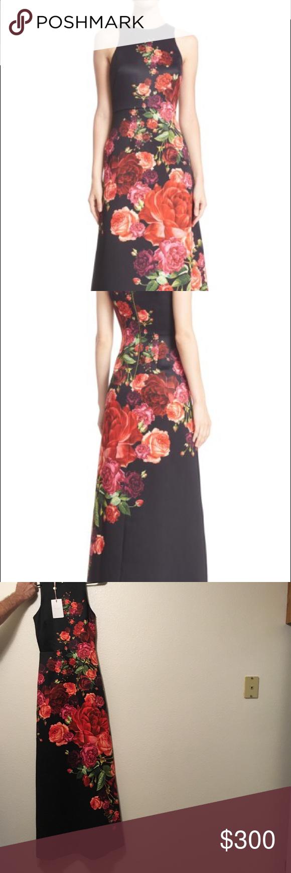 0d3e67a3fc9fd Ted Baker Juxtapose Rose Marico Maxi Dress 0 US 2 Set against a dark canvas