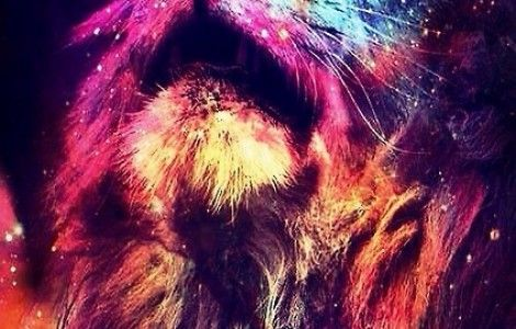 Iphone Wallpaper Tumblr Abstract Lion Abstract lion