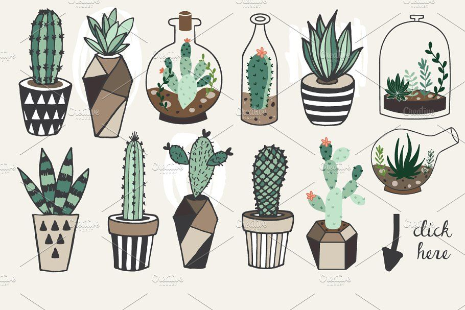 75OFF Succulents +Unlimited License in 2020 How to draw