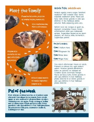 Inside paged 1. Animal or pet newsletter. Great for animal ... on veterinary referral form template, we love your pets template, veterinary job application template, veterinary new client form template, veterinary newsletter ideas, veterinary medical form template,