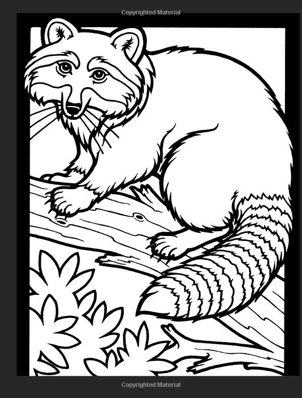 Amazon Woodland Animals Stained Glass Coloring Book Dover Nature 9780486274812 John Green Books