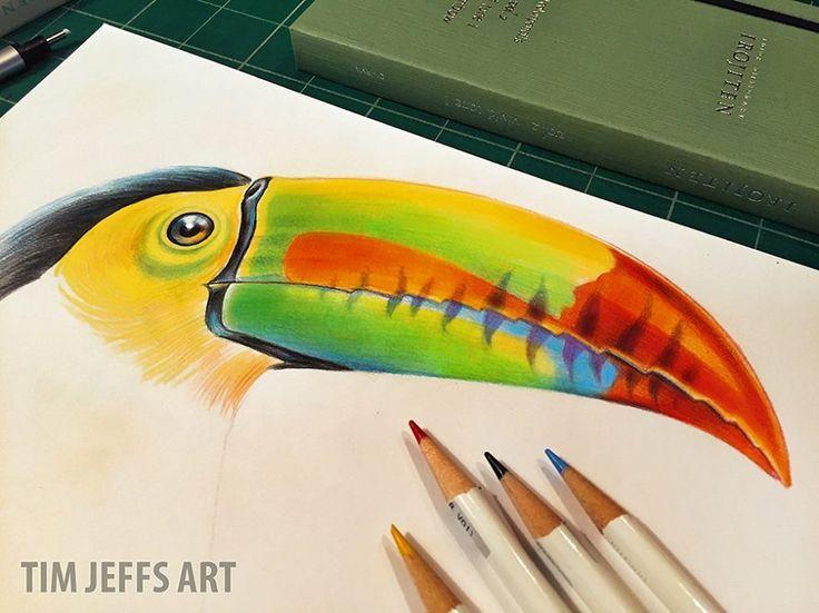 Toucan illustration by @timjeffsart using @tombowusa Irojiten Colored Pencils