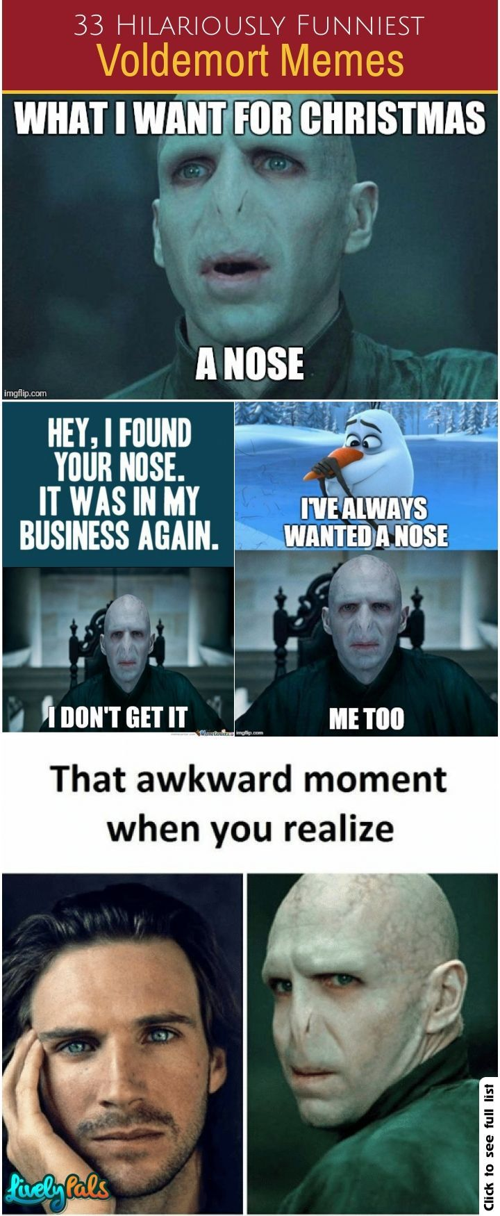 33 Funniest Voldemort Memes Harrypotter Voldermemes Funnymemes Livelymemes Lord Voldemort Memes Voldemort Harry Potter Memes Hilarious