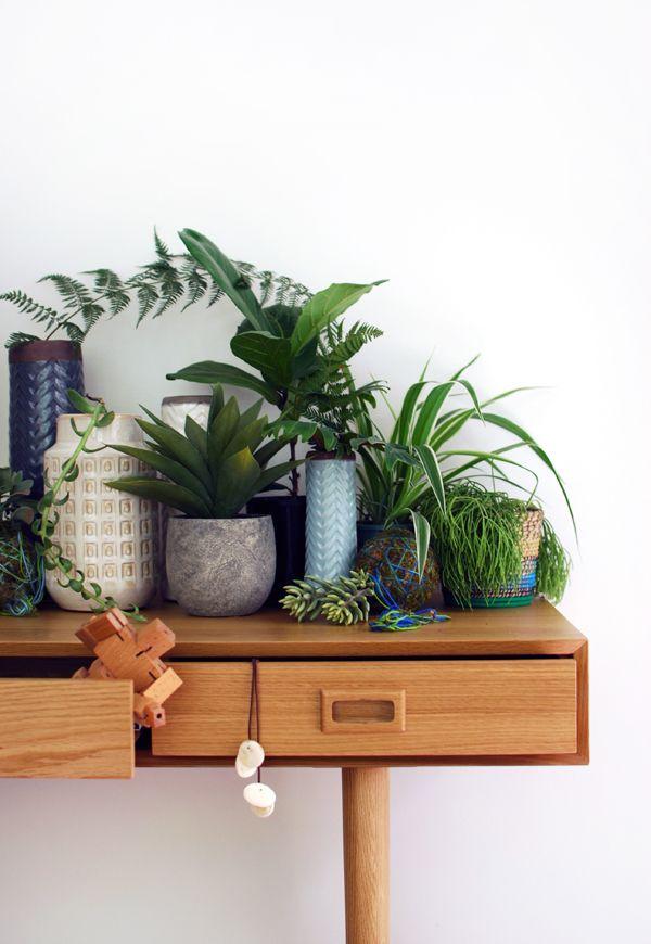 Holz und pflanzengrün sind immer ein gutes Duo – Pflanzenfreude.de