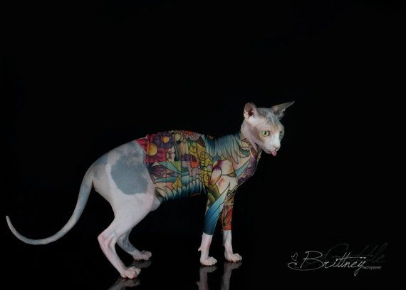 Long Sleeve Sphynx Cat Clothes In Lucky 39 S Bird By Tattcat Tattoo Cat Clothes Dog Shirt Cat Sweater Dog Shirt Cat Clothes Sphynx Cat Clothes Sphynx Cat