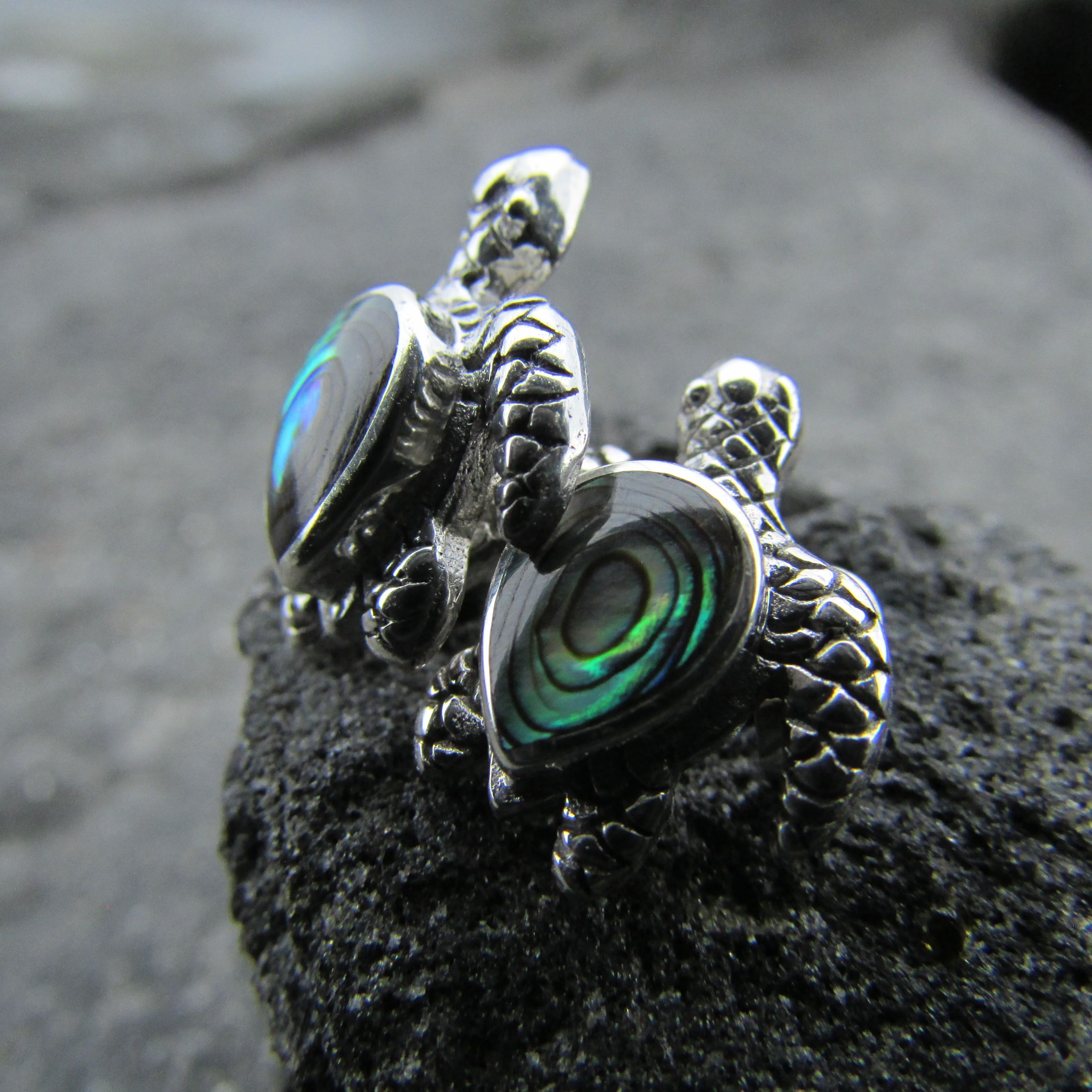 stud dp amazon silver abalone simulated jewelry com sterling earrings turquoise seashell