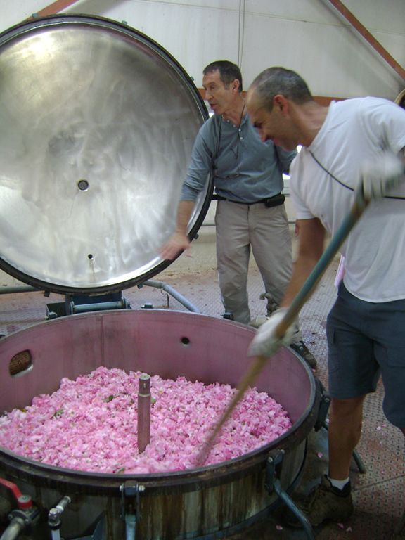 Flower extraction   Ingredients and Process   Perfume
