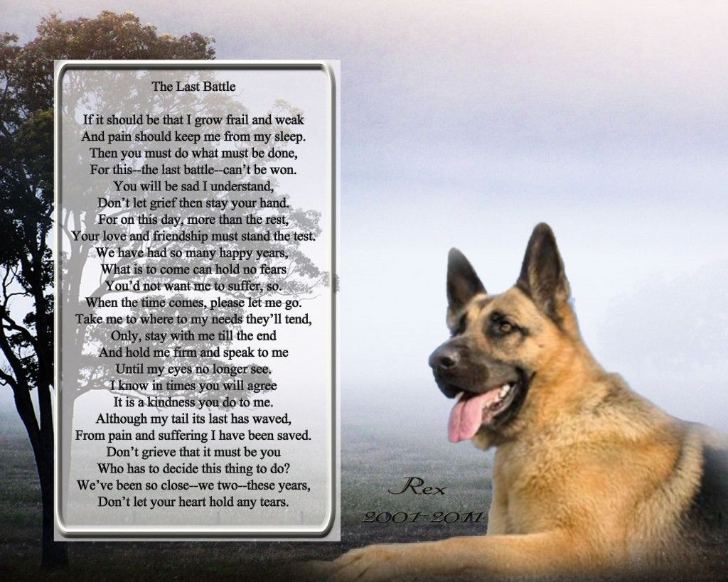 sayings and picture for the loss of your german shepherd