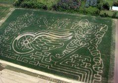 Norman Debuck Owner Of New Lawn Sod Farm In Belleville Mi Created A Red Wings Themed Maze At His Farm This Is An Article From 9 1 Corn Maze Maze Belleville