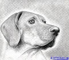 Resultado De Imagen Para Dibujos A Lapiz De Perros Tiernos Dibujo