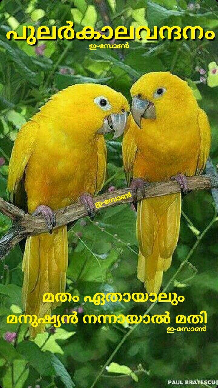 Pin on Good morning ( Malayalam )