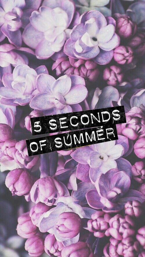 5sos Luke Hemmings And 5 Seconds Of Summer Image With Images