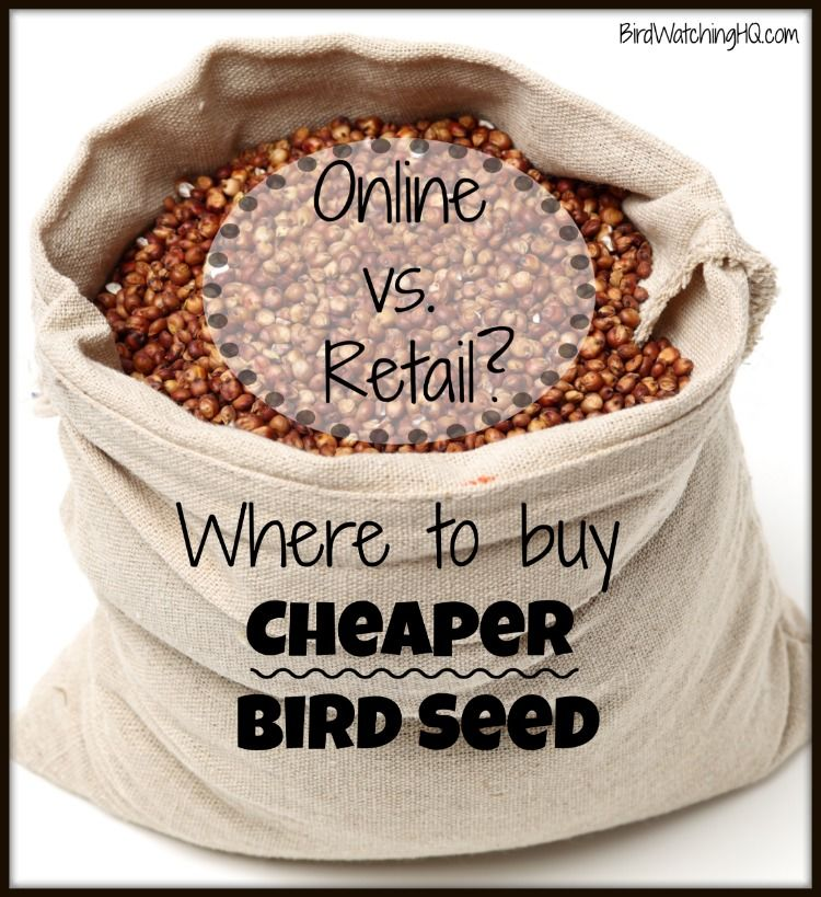 Cheapest Place Buy Groceries Online