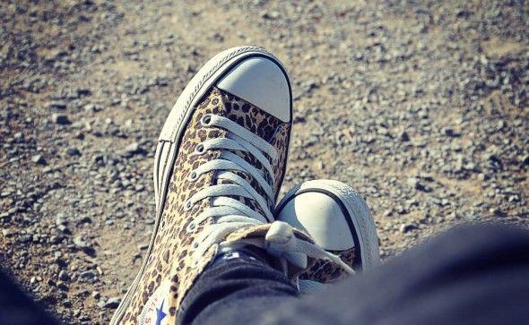 Converse Chucks mit Leoparden-Muster