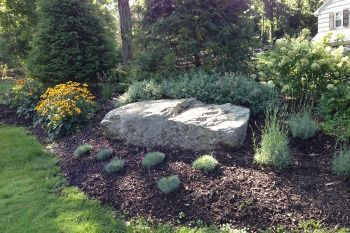 Decorative Stone Gravel And Rocks With Images Landscaping
