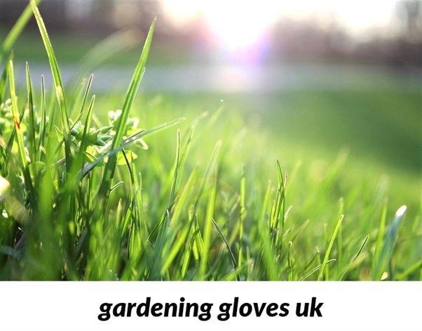 Gardening Gloves Uk 306 20180915173556 53 Gardening Music And