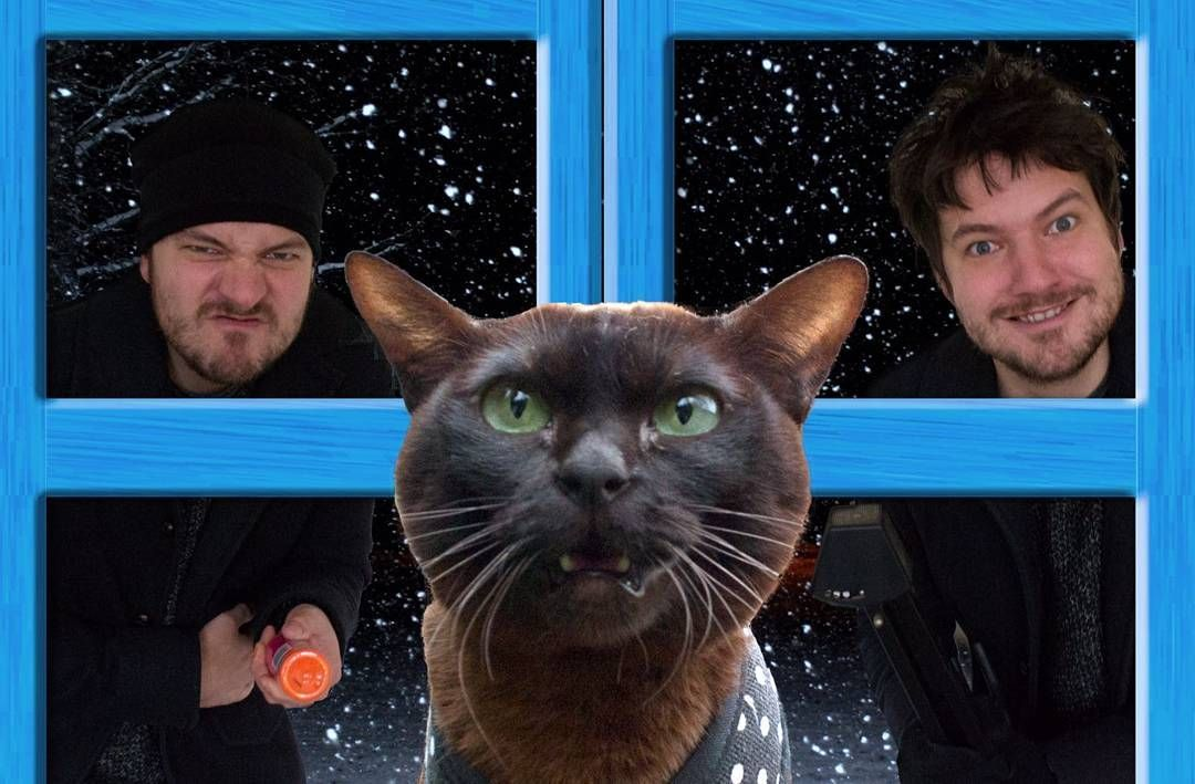 Man Recreates Famous Movie Posters With His Cat And The Result Is Hilarious Famous Movie Scenes Movie Scenes Famous Movies