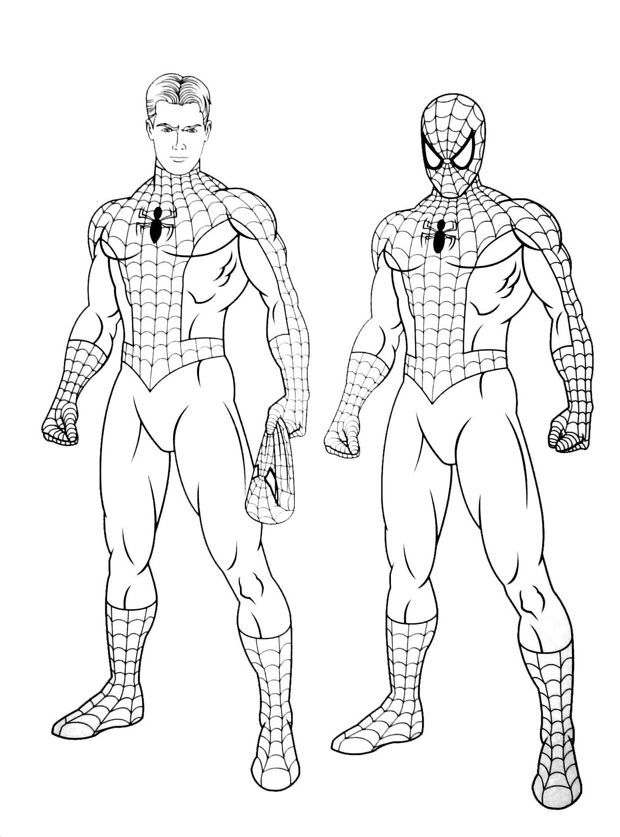Dessin Spider Man