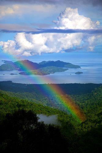 Never Never Land Rainbow In The Rain Forest Beautiful Nature Rainbow Sky Rainbow Rain