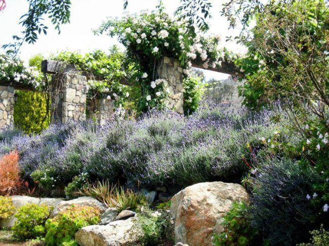 steingarten anlegen lavendel hang gestaltung steine gross ...