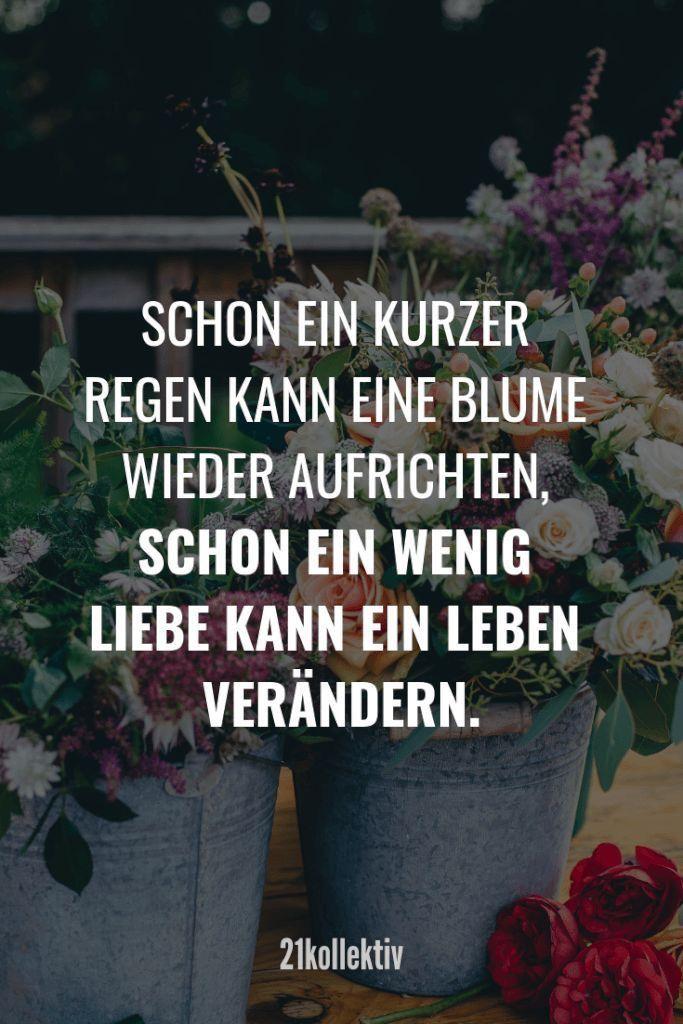 Love Sayings: Sayings that go to the heart- Liebessprüche: Sprüche, die zu Herzen gehen Even a short rain can raise a flower, even a little love can change a life.